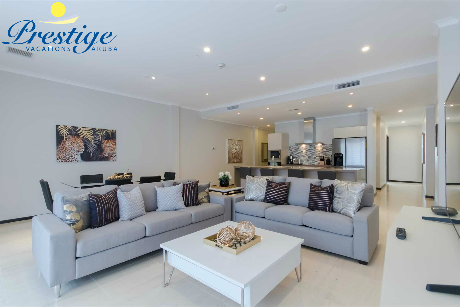 The living area is provided with a large Smart TV and a sofa-bed